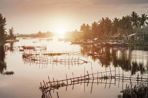 Schadstoffbelastung in Fischen & Meerestieren: Schadstoffe, Aquakultur & Gütesiegel