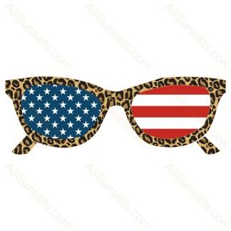 Leopard Print American Flag Sunglasses