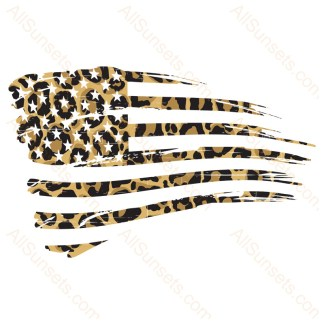 Leopard Print Grunge American Flag