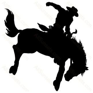 Rodeo Man Riding Bronco Vector