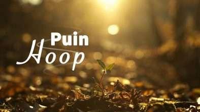 Puin hoop