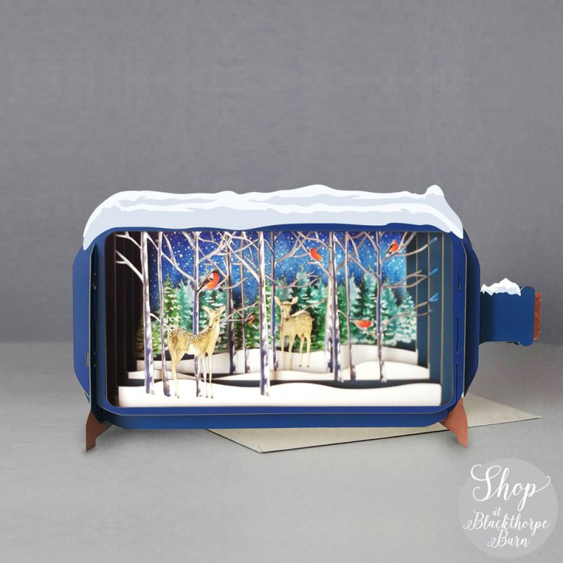 Christmas Message in a Bottle - Winter Forest