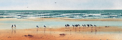Oyster Catchers print by Katie Millard