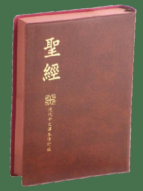 TCV062P-2
