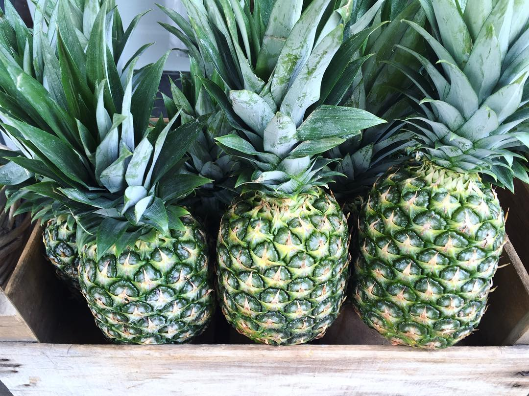 PINEAPPLE SATURDAY 🍍🍍🍍🍍🍍🍍🍍 #fruxinoantwerp #caroherentals #multibrand #fashionstore