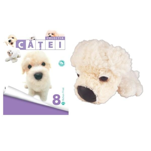 catei8