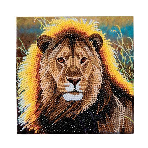 Perles à coller lion
