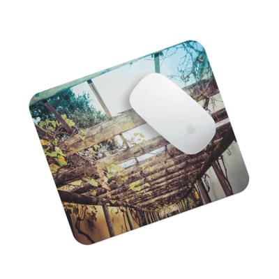 Hanging Plants (Mouse Pad) - © 2016 Darren Bowen Photography