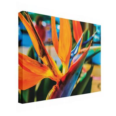 Beautiful Canvas Wraps by Darren Bowen Photography