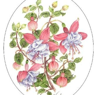 Pink and Blue Fuchsias embroidery panel, ready to embroider