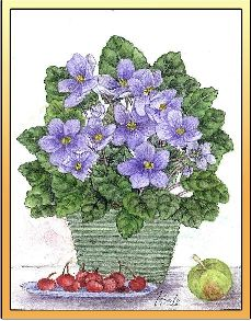 African Violet embroidery panel, ready to embroider