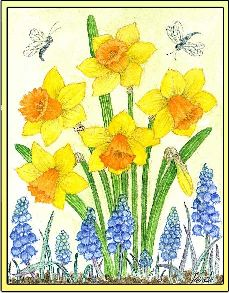Daffodils embroidery panel, ready to embroider