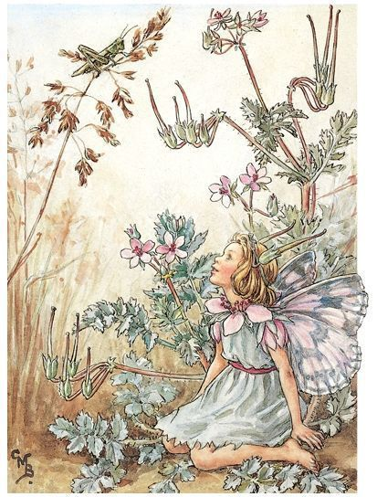 Stork's Bill Fairy embroidery panel, ready to embroider