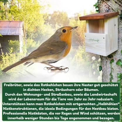 Rotkehlchenhaus Rotkehlchen