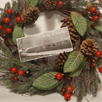 Christmas Card - Hemlock Ravine Park
