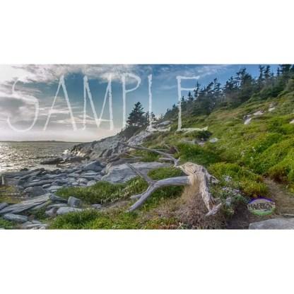 Taylor Head Provincial Park Background (2)