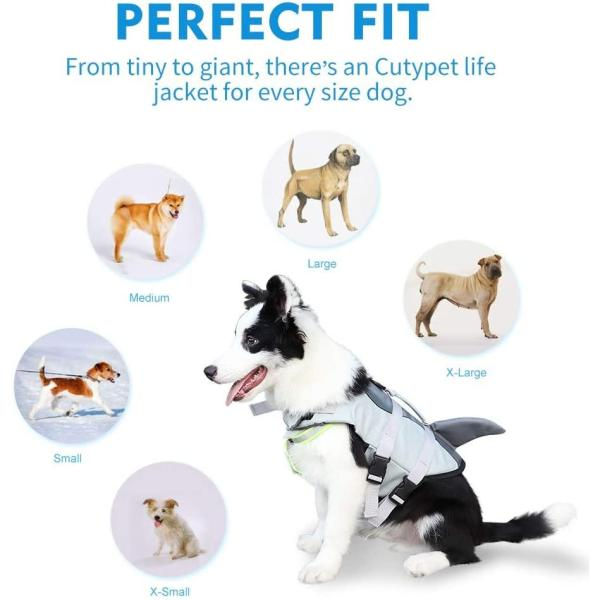 dog floatation vest