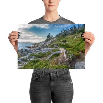 taylor head provincial park nova scotia photo print