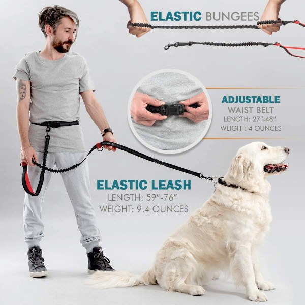 Pet Dreamland Hands Free Leash for Running Large Dogs - Waist Dog Leash - Professional Shock Absorbing Bungee Harness - Reflective Dog Running Belt