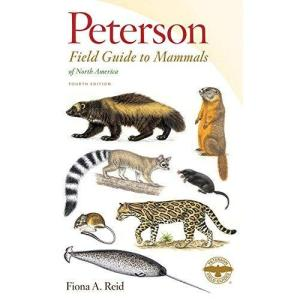 Peterson Field Guide to Mammals of North America: 4th Edition (Paperback)