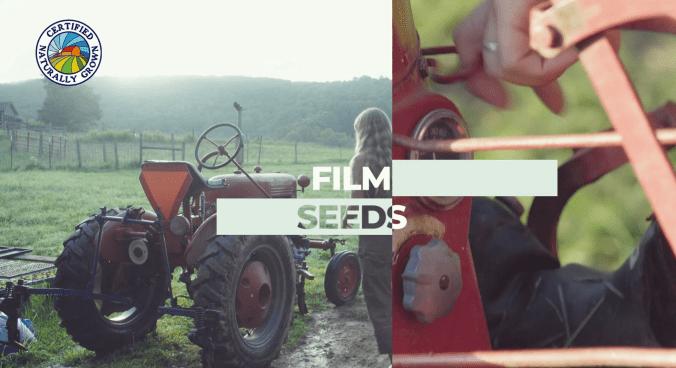 Film Seeds