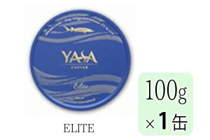 YASA-EL-100
