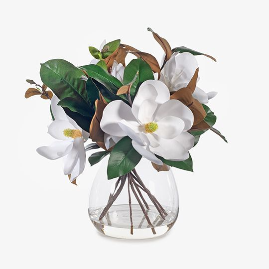 Magnolia Grandiflora Mix in Vase