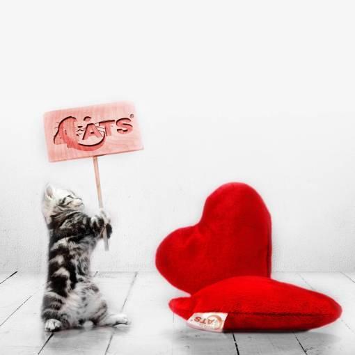 45-050_4cats-herz