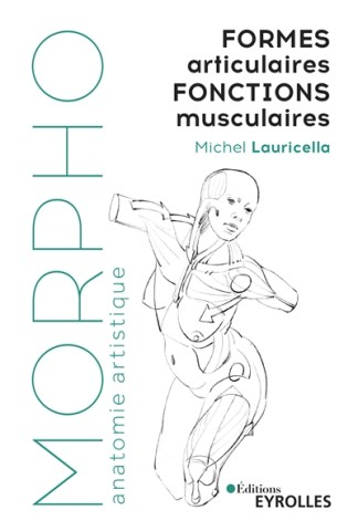 Formes articulaires, fonctions musculaires