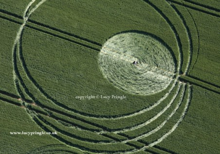 West Woods, Nr Lockeridge, Wiltshire - 21 June 2015 Wheat. c.230ft (70m) A series of outer rings with a circle inside touching the outer rings.