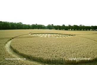 A Vesica Pisces with a woven centre and small tufts of standing crop.