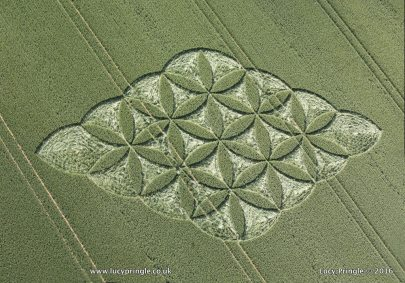 Popham, Nr Basingstoke, Hampshire. 28 June 2016. Wheat.   c.170 feet (52m) Floral design inside a rhombus.