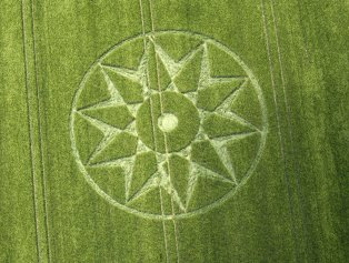 Willoughby Hedge, Nr Mere, Wiltshire. c.110 feet (35.5m) diameter 5th June 2016. Barley. A decagram inside a ring.