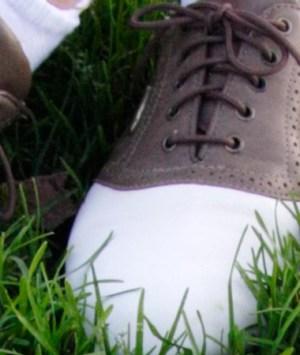 Sacs range chaussures