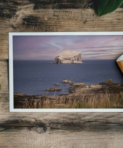 Bass Rock | Manel Quiros Photography