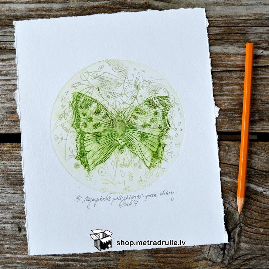 Nymphalis polychloros. Fine art print. Etching. Miniature.