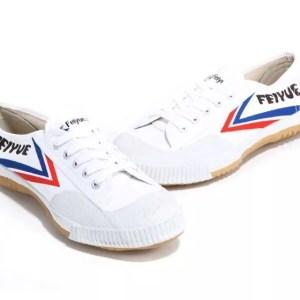 Feiyue Shoes-0