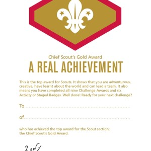 106341 Chief Scouts Gold Award Certificates (Pack of 10)