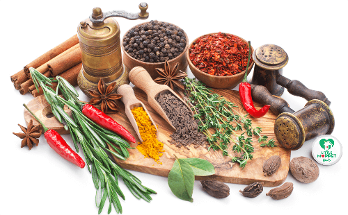 buy organic spices for babies online