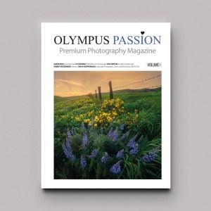 Magazine (Paper)