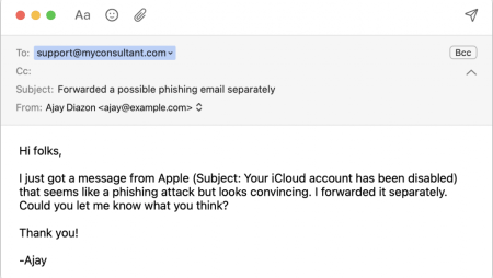 When Asking about Phishing Email, Make Sure to Write Separately Too