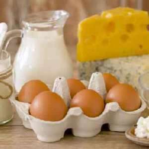 Mliječni proizvodi i jaja