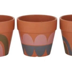 Ritchie Terracotta Pots The Plant Lounge