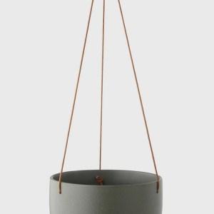 Cade Hanging Basket Cypress