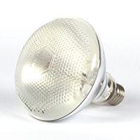 Ampoule  HQI UV REPTECH® 80/100/160W (sans ballast)