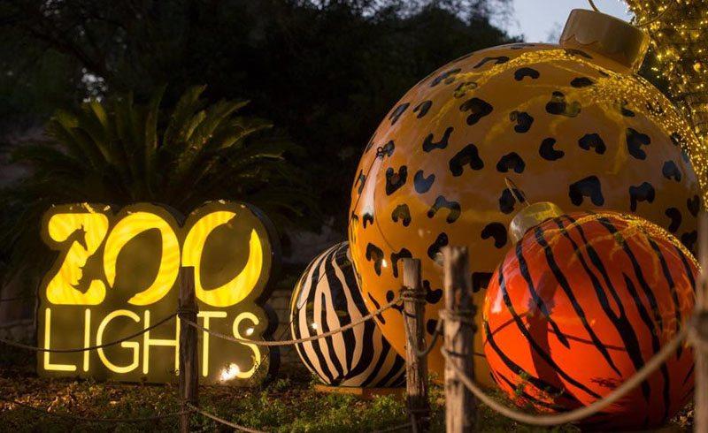 Zoo Lights Dallas