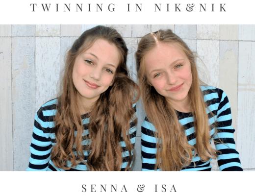 Twinning in NIKKIe (1)
