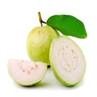 Fruits Guava (Amrood)