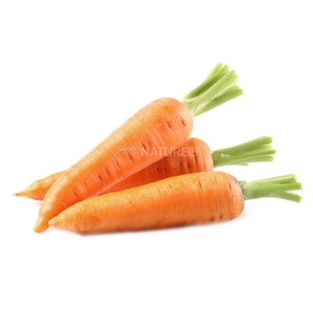 Fresh Vegetables Carrot (Orange) [tag]