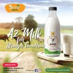 Dairy A2 Milk – Subscription